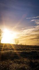 here comes the sun (A.K. 90) Tags: cloudssunsetsstormssunrise sun sunlight light shadow licht schatten grass gras landscape landschaft nature natur sonnenaufgang sonyalpha6300 e18135mmf3556oss
