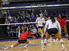 Washington Arizona-FT4I2485 (Pacific Northwest Volleyball Photography) Tags: volleyball ncaa pac12 pac12vb womensvolleyball arizona washington uwhuskies