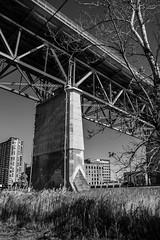 Jacques-Cartier - Bridge structures - Structures du pont (soniamarmen) Tags: skancheli montreal canada blackwhite bridge structures jacquescartier