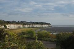 Pegwell Bay to Broadstairs. An Autumn walk with Max. (favmark1) Tags: autumn walk pegwell pegwellbay kent coast nationalcoastalpath