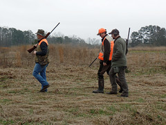 Alabama_Pheasant_Hunt_2017 9 (dever_brett) Tags: hunting alabama pheasant