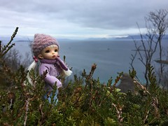 Out and about on a grey day. Thumbelina enjoyed the view. (steen76) Tags: bjd tiny ante pukipuki fairyland