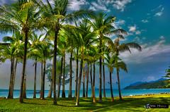 Phulay Bay Trees HDR.jpg (Pablo Maresca Photography) Tags: vacations hdr thailand