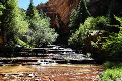 Utah_2018_ (65 of 144) (jasinrodriguez) Tags: zion trekking family narrows subway zionnationalpark nationalparks outdoors