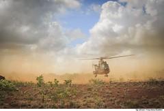 C-SAR - CRUZEX 2018 (Força Aérea Brasileira - Página Oficial) Tags: airbushelicopterh225m bra brasil brazil brazilianairforce csar cruzex cruzex2018 caracal eurocopterec725 fab forcaaereabrasileira forçaaéreabrasileira fotojohnsonbarros h36caracal helibras natalrn aeronave aicraft helicopter helicoptero rescue resgate natal rn 181126joh1260johnsonbarros
