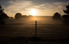 First Frost (music_man800) Tags: frost frosty cold icy dew chilly dawn sunrise morning royal air force raf lakenhetah norfolk viewing area fence trees field barbed wire sun sunny october autumn fall 2018 misty hazy flare bright backlight back lit backlit silhouette colours pretty beautiful scene scenery nature natural canon 700d adobe lightroom creative cloud edit photography landscape post shapes sky clouds wisp blue yellow golden hour 8am