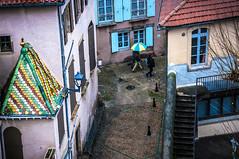 Couleurs, parapluie et tuiles (nkpl) Tags: millau rue street pluie rain outside outdoor extérieur lumièrenaturelle naturallight parapluie umbrella toit roof couleurs colors ville city town aveyron