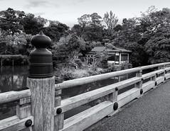 The bridge and the shrine (Tim Ravenscroft) Tags: bridge ikutsushima shrine lake gosho kyoto palace gardens hasselblad hasselbladx1d x1d monochrome blackandwhite blackwhite