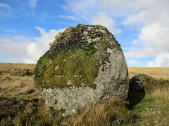 Giant's Marble side view SX 58230 71695 (Bridgemarker Tim) Tags: dartmoor scenes moorland tors outcrops