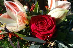 Happy Weekend (Gartenzauber) Tags: floralfantasy