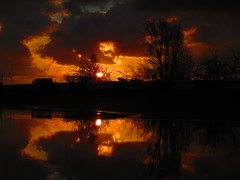 Sunrise 22-11-2018 (gallftree008) Tags: sunrise reflection reflected reflective reflections reflects ireland eireann effect water puddle puddles sun dap dublin dublinairport codublin county co fingal tree trees clouds cloud cloudsstormssunsetssunrises airport irish irishwildlife morning nature naturesbeauties naturescreations sky underthetrees vanishing vanishingpoints wildlife