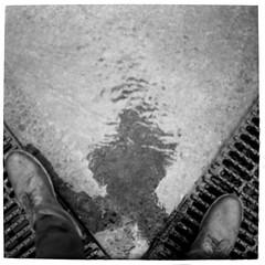 Puddle selfie! (Mattias Lindgren) Tags: autumn sverige medium format 6x6 sweden pentacon six tl film iso 100 mf f28 120film scan fomapan 80mm bw höst foma analog mc biometar 2880 carl zeiss jena mcbiometar2880carlzeissjena foma100 fomapan100 iso100 mediumformat pentaconsixtl 2018recap