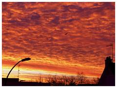 Cadeau du ciel, au levé du soleil. (CorcuffR) Tags: st saint nazaire lever soleil couché lune ciel rouge orange