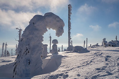 Schneeschuhwanderung zum Plöckenstein, Bayer. Wald / Snowshoe hike to Plöckenstein, Bayer. Forest (ludwigrudolf232) Tags: schneeschuwanderung schnee bayer wald plöckenstein