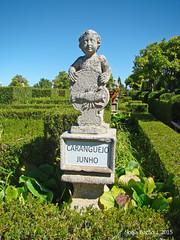 Jardim do Paço Episcopal, Castelo Branco 08 (Sofia Barão) Tags: portugal beira baixa jardim garden