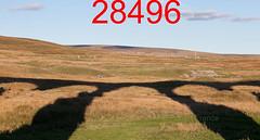 robfrance5d2_28496_280918_ribblehead_viaduct_inf_edr16lr6coefx4weblowres (RF_1) Tags: 2018 britain british dales england rail railroad rails railway railwayviaduct railways ribblehead ribbleheadviaduct rural sc settlecarlisle shadow shadows transport uk unitedkingdom viaduct yorkshire