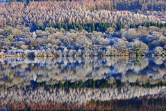 Christmas Kaleidoscope (anthony.dyke1) Tags: snow brecon wales reflections lakes