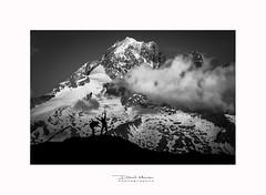 L'aiguille verte, Massif du Mont-blanc - France (David MONSU Photography) Tags: laiguilleverte granderocheuse pointecroux aiguilledujardin glacierdetalèfre chamonix montblanc montagne moutains snow alpinisme mariocolonel