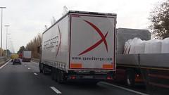 Kögel Maxx Mega Coil - Speedbergx Sp zoo Spółka Komandytowa Tomaszów Mazowiecki, Woiwodschap Łódź, Polska (Celik Pictures) Tags: trucks lkw vrachtwagen camion lastbilar lastwagen lorry moving movingvehicles rijdendvoertuigen belgië belgium belgique belgiën belgie belgien seeninbelgium gezieninbelgië spottedinbelgium snelweg highway autobahn freeway e313 e313snelweg spottedate313snelweg a13 no5236s kögel maxx mega coil speedbergxspzoospółkakomandytowa tomaszówmazowiecki woiwodschapłódź polska