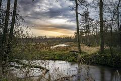 Griesbroek (Geert E) Tags: nature landscape sunset river wood winter longexposure