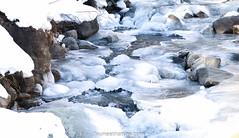 Quand l'hiver fige les torrents... (fauneetnature) Tags: hiver winter winterlandscape paysage paysagemontagne paysagedhiver mountainlandscape nature naturephotography photonature photomontagne lecorbier savoie alpes alps torrent glace ice neige snow