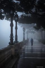 Transición (AvideCai) Tags: avidecai tamron2470 niebla cádiz calle vertical gente