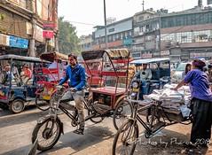 Old Delhi 2018 (Julie H. Ferguson (Photos by Pharos)) Tags: travel india newdelhi markets shopping olddelhi chandnichowk market rickshaws crowds traffic