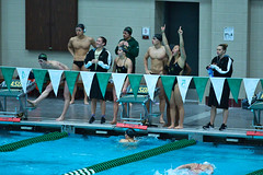 142A1203 (Roy8236) Tags: gmu american old dominion swim dive