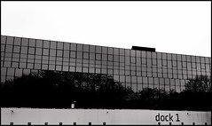 dock 1 (vincentag) Tags: belgium bruxelles geometry lines trees black white monochrome high contrast building glass windows
