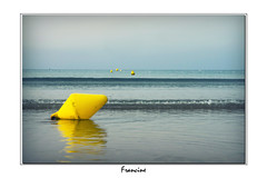 _IGP2788 (Francinen89) Tags: mer sea eau water plage beach bleu blue jaune yellow vacances holidays bretagne france