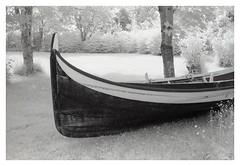 (2018) (phamnes) Tags: norway otterøya hamnes analogphotography slr 35mm 135film blackandwhitefilm r72filter infraredphotography infraredfilm infrared xtol superpan200 rolleisuperpan rollei nikonf301 nikon epsonv600