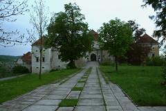 Svirzh castle (verinenprinssi) Tags: ukraine lviv architecture castle fortress