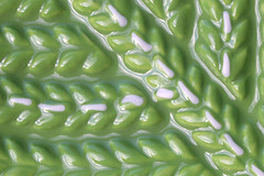 ceramic green (Patrick JC) Tags: macromondays green ceramic dish pattern abstract glaze olive macro details shine