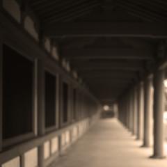 Stepping into the unknown (OoF) (lebre.jaime) Tags: japan kyoto sanjusangendo 三十三間堂 京都 hasselblad 503cx planar cf2880 kodak ektachrome epd temple buddhism conceptual