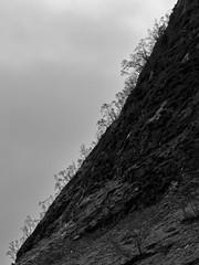 Glen Etive (Andreas Gugau) Tags: landschaftsfoto schottland united kingdom gbr natur nature nebel fog mist wolken clouds blackandwhite scotland uk glen etive britain wood forest bäume wald mountains berge hills highlands hügel baum holz himmel landschaft landstrase unitedkingdom