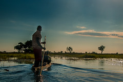 Poling (selvagedavid38) Tags: boat canoe okavango botswana delta mokoro pole poling river water transport safari africa travel explore sky man guide tour adventure