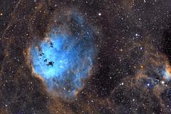 IC410-417 Hubble Palette (eBear Foto) Tags: nebula night stars astorphotography tadpole ic410 ic417 hubblepalette astrometrydotnet:id=nova3163052 astrometrydotnet:status=solved