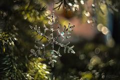 Swirly snowflake (Rita Eberle-Wessner) Tags: bokeh snowflake artificial artificialsnowflake pearls perlen glasperlen glasspearls christmastree swirly swirlybokeh weihnachtsbaum helios helios442