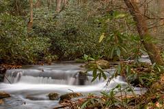 DSC01253 (PsycDocF) Tags: chattahoocheeoconeenationalforests ravensclifffalls northgeorgia georgia waterfall