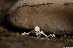 Stuck in the snow! (EatMyBones) Tags: figurine mercantour miniature nature poseskeleton rement skeleton snow toy toyphotography