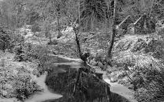 Winter's River (Richard Todd Photography) Tags: winter winterbeauty snow snowscene