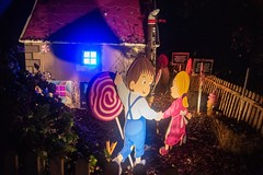 20181029_0095_1 (Bruce McPherson) Tags: brucemcphersonphotography glowinthegarden halloween colourfullights colouredlights spooky fun creative creativelightinglowlightphotography nightphotography vandusangardens vancouverparksboard vancouver bc canada