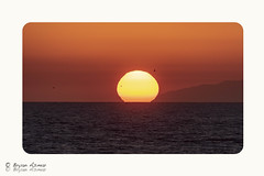 Mega SunSet @ Victoria beach Laguna California (bryanasmar) Tags: mega sunset victoria beach laguna california nikon d750 tamron 15060mm shot 600mm ngc ngg national geographic best amazing art zoom super dramatic nationalgeographic seagull birds ngw sun water f11 is0200 iso200