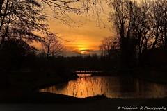 Wambrechie ( Nord-France ) (J'aime voir la nature ainsi !!!) Tags: eau soleil arbre nature automne etant nuage reflet