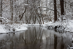 Churiliha River (gubanov77) Tags: river winter russia snow landscape nature moscow lublino kuzminki water forest wood tree churilihariver