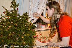 The chistmas tree (DSC_9684vk) (Villi Kristjans) Tags: vilmundur vk villi vkphoto vacation kristjansson kristjans kristjáns kristjánsson trip travel sverige svíþjóð sweden color colour digital d3200 nikon hilmar heiðberg man boy christmas jól tree indoor