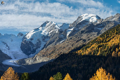Piz Bernina and Piz Morteratsch (dieLeuchtturms) Tags: morteratschgletscher 3x2 herbst europa graubünden gletscher berninagruppe alpen schweiz alps berninarange cantonofgrisons europe morteratschglacier swisse switzerland vadretdamorteratsch autumn fall glacier pontresina ch
