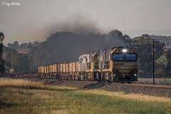 Smoky Steel (Jay McGhee) Tags: pacificnational pn railway australianrailways railwaysofaustralia victorianrailways freighttrain rpaunrclass rpaunrclassnr12 melbourne dynon albury wodonga victoria port kembla new south wales bluescope steel