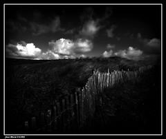 Ganivelle....... (faurejm29) Tags: faurejm29 canon ciel sigma sky paysage nature nb