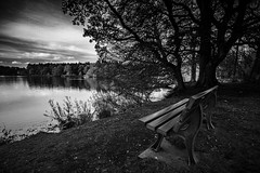 "evening attraction of the inviting bench overlooking the loch at Haddo House & gardens, Aberdeenshire, Scotland. Fine art black & white (grumpybaldprof) Tags: canon 7d sigma 1020mm f456 ""wideangle"" ultrawide bw blackwhite ""blackwhite"" ""blackandwhite"" noireetblanc monochrome ""fineart"" striking artistic interpretation impressionist stylistic style contrast shadow bright dark black white illuminated mood moody atmosphere atmospheric bench evening inviting pond lake loch water reflections ""haddohouse"" gardens park ""williamadam"" 1732 georgian gordons aberdeenshire scotland ""georgegordon"" ""1stearlofaberdeen"" ""lordchancellor"" ""maternityhospital"" methlick ellon tarves house chateau ""marquessofaberdeen"" ""500years"" ""palladinstyle"" ""georgehamiltongordon"" ""4thearlofaberdeen"" ""britishprimeminister"" ""1852–1855"" ""burnofkelly"" trees wood forest"